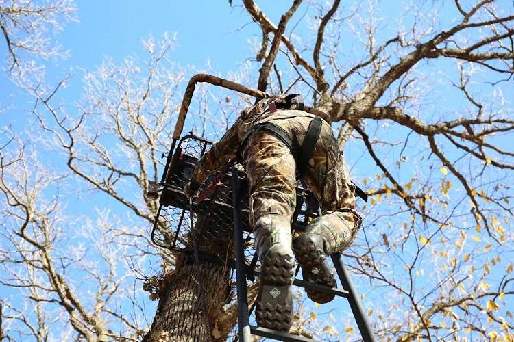 Hunter Climbing on Treestand